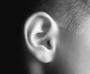02A12B8G; Young person's ear in black and white